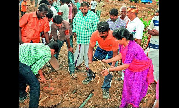 Collector Jayashree Muralidharan, along with a group of volunteers, is seen de-silting the Maavadikulam, an irrigation tank, at Ponneripuram near Ponamalaipatti in Thiruverumbur taluk on Sunday.—DC