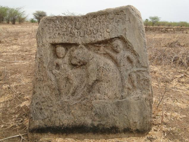 One of the earliest hero-stones, of the Pandya country found in March 2014 in Tuticorin district. / Photo: G. Paul Durai / The Hindu