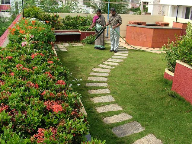 Roof Garden at Ganga Street  Besant Nagar  Photo  M  Karunakaran   The. Chennai First   Blog Archive   Help to raise a vegetable garden at
